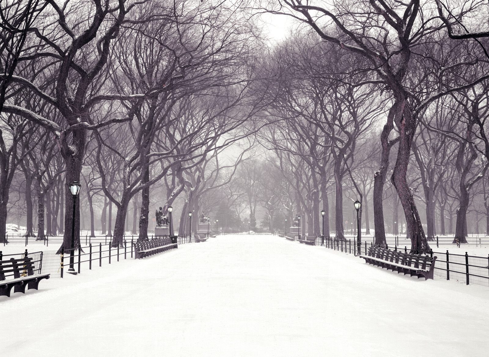 central_park_winter_snow_wallpaper-other
